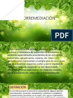 FITOREMEDIACION_2.pptx