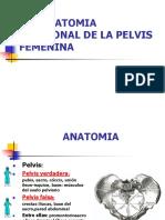 ANATOMIA PELVICA.ppt