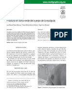 articulo escapula.pdf