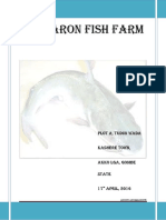 A_BUSINESS_PLAN_ON_FISH_FARMING_IN_KASHE.pdf
