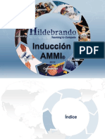 Induccion_AMMI_2012_-_a1
