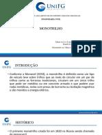 Modelo-de-slide-2 (1)