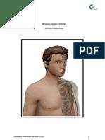 SISTEMA TEGUMENTAR - CEFAD MANUAL ANATOMIA.pdf