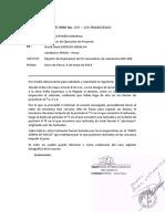 informe N° 05 2019 PRAXIS -DAG word