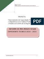 Informe Final Marzo Ok 2015 f