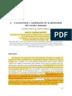 APL_TORMOS_Caracterización y Modulación plasticiadad cerebro humano copia.pdf