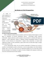 Explicação Do Ciclo Petrogenético_Aula 3