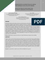 FATORES DETERMINANTES DA ESTRUTURA DE CAPITAL.pdf