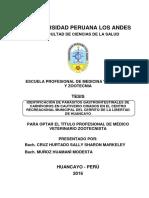 IDENTIFICACIÓN DE PARÁSITOS GASTROINTESTINALES DE CARNÍVOROS EN CAUTIVERIO CRIADOS EN EL CENTRO RECREACIONAL MUNICIPAL DEL CERRITO DE LA LIBERTAD.pdf
