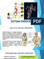 diapositivas endocrino.1