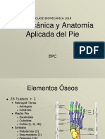 Clase 2 Biomecánica y Anatomía Aplicada Del Pie 2018 (1)