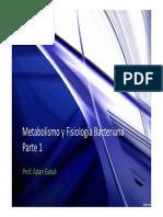 Metabolismo parte 1 pdf.pdf