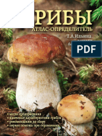Грибы. Атлас-определитель.pdf