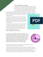 Definiciones Básicas y Conceptos de La Antena