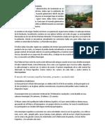Historia Del Municipio de Catarina