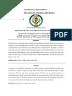 Ultimo Informe Conservacio EM