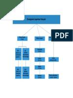 PDF Franceza