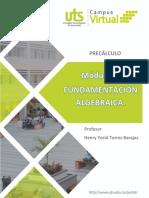 Contenido Modulo 1_Fundamentacion Algebraica
