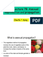 CS 32 Lec. 7b.asexual Propagation
