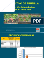 Frutilla 2019.pdf