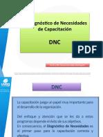 Diagnostico Necesidades Capacitación (DNC)