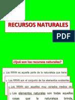 RRNN - paitannn