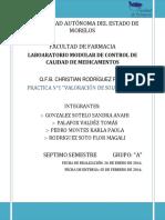 VALORACION_DE_SOLUCIONES.docx