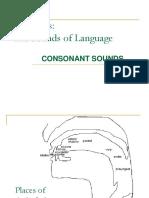 4 Phonetics Consonants