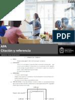 Capacitacion APA.pdf