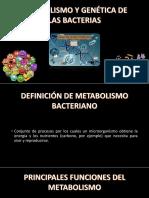 metabolismo y genetica bacteriana