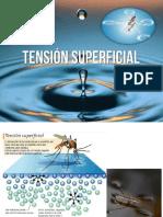 tensinsuperficial-121110005236-phpapp02