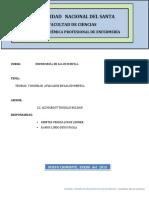 296891809-Teorias-y-Modelos-de-Enfermeria-Aplicados-a-La-Salud-Mental-Final-Del-Finalito.docx