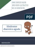 13. Sx diarreico.pdf