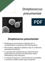 1527981637402_Streptococcus Pneumoniae y Otros