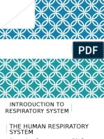 introduction to respiratory system