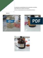 conclusion inflamacion.docx