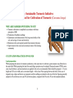 Turmeric Project.pdf