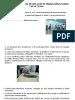 RESUMEN DE PACIENTE PARA PEGAR.pptx