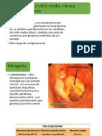 coleasteatoma