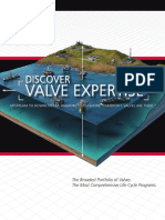 Cameron's Valve.pdf