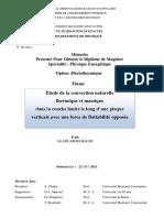 SAA6085-1.pdf