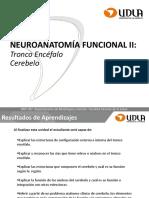 Clase 6 Neuroanatomía Tronco Encéfalo y Cerebelo MYF201 201920