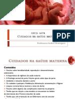 PPT Cuidados na Saúde Materna