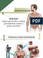 PPT Sistema Gastrointestinal UFCD 6567