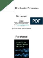 Lieuwen.complete.pdf