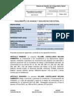 Reglamento de Higiene y Seguridad Industrial Asocarbones San Luis