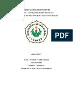 Chemical Practicum