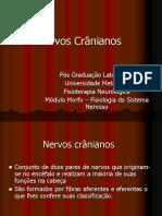 Nervos+cranianos