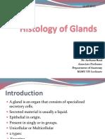 Histology Glands