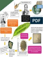 Historia de La Fito patología